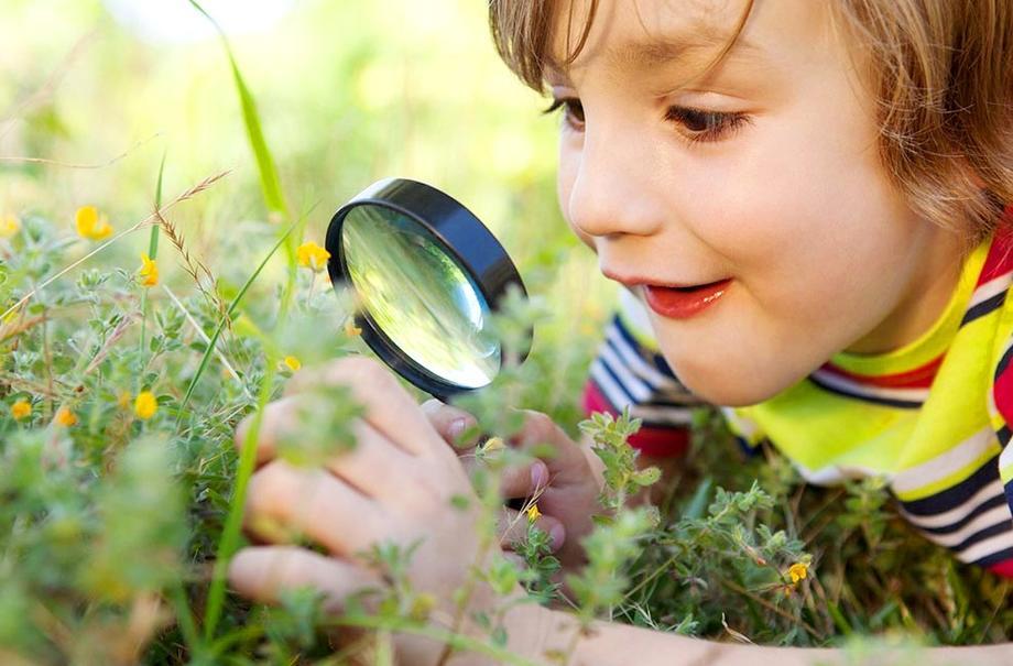 Что должен знать дошкольник об окружающем мире?