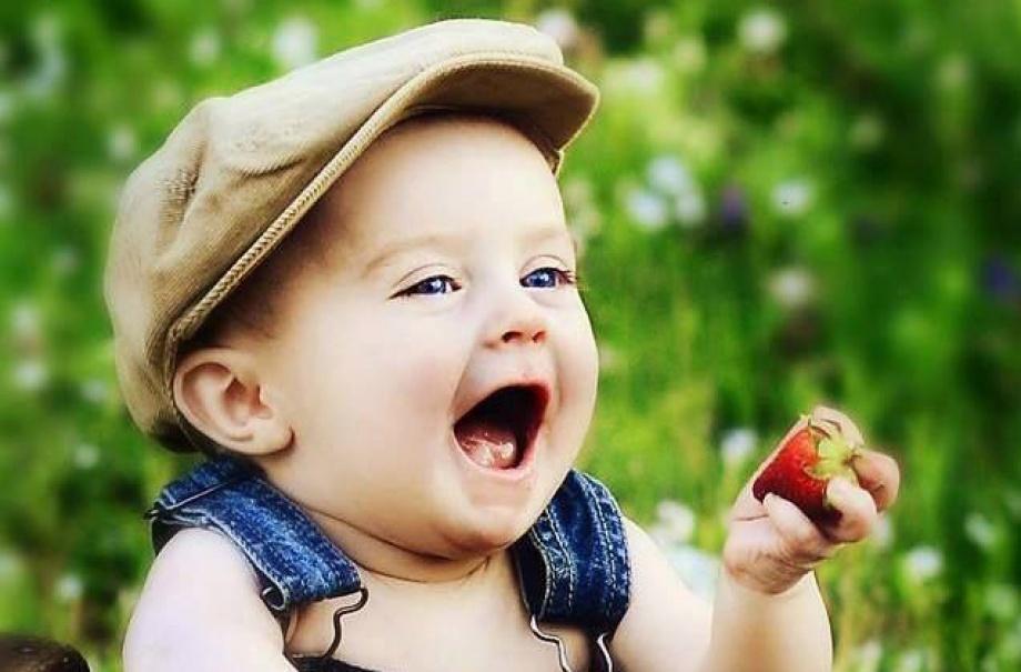 Детский прикорм - что и когда лучше давать. Можно ли фермерские продукты?