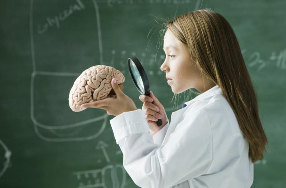 Развитие мозга ребенка. Что важно знать родителям?