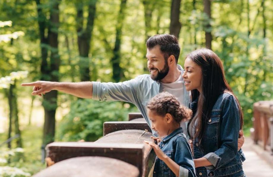 Принципы Монтессори для родителей, которые только начинают свой путь