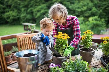 Садоводство в Монтессори среде: чем полезна работа с растениями для дошкольников?