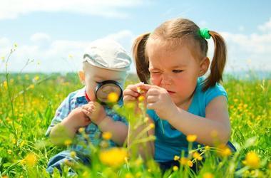 Как и зачем поддерживать детскую любознательность?